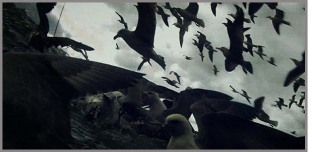 Leviathan Trailer