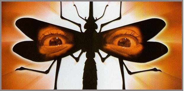 Mosquito 1995 Gary Jones